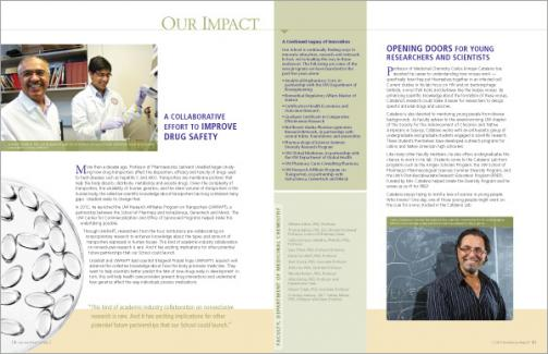 School of Pharmacy 2013 Excellence Report