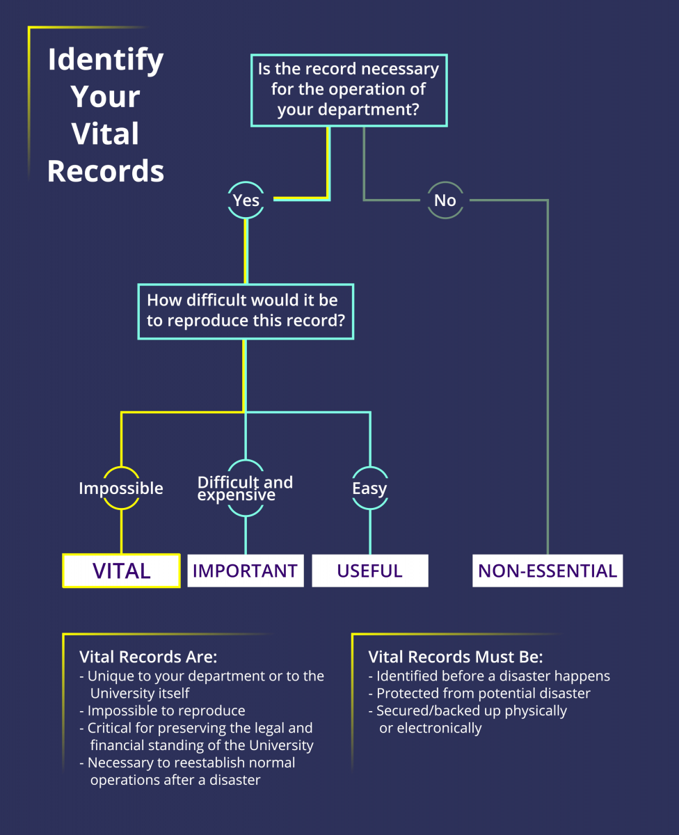 identify your vital records infographic