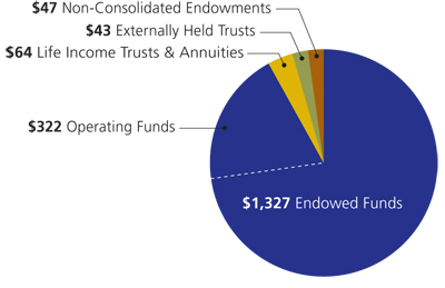 endowment and similar funds pie graph